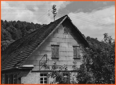 Haus mit Blechplattenverkleidung im Giebelbereich, Eberdingen (Landkreis Ludwigsburg)